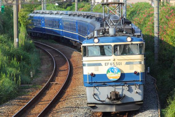 朝日を浴びて横須賀線を往く『ELみなかみ号』