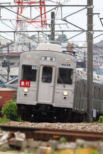 往年の姿に戻された8039F 大倉山-綱島間にて