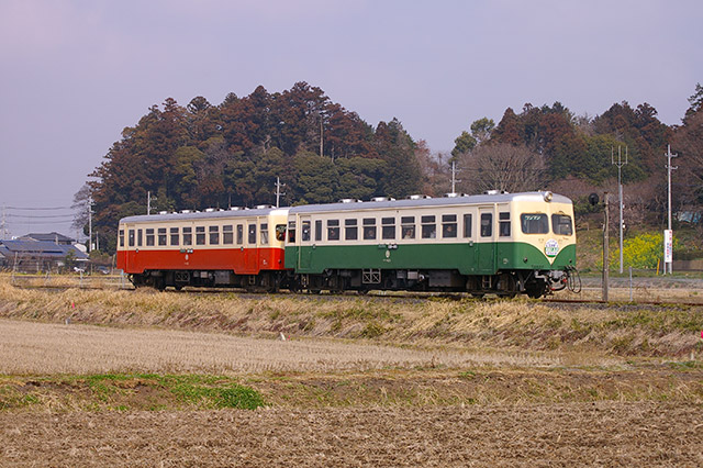 006 キハ431とキハ432登場